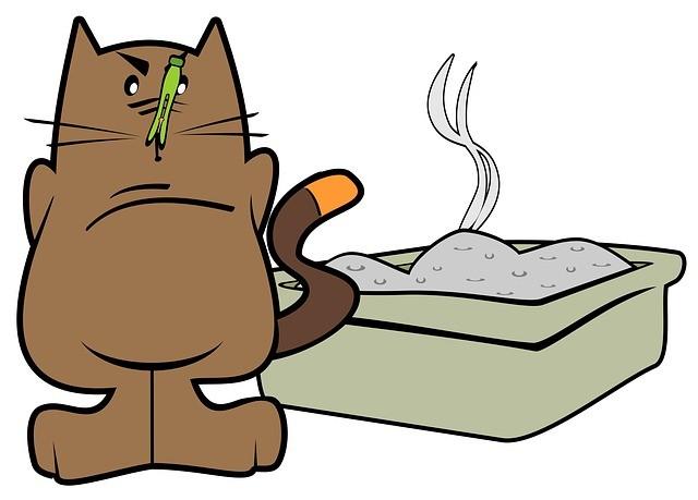 Как избавиться от запаха и пятен кошачьей мочи
